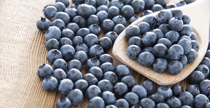 HH_SF_Blueberries_Fotolia_67989855_Subscription_Monthly_L_736x380