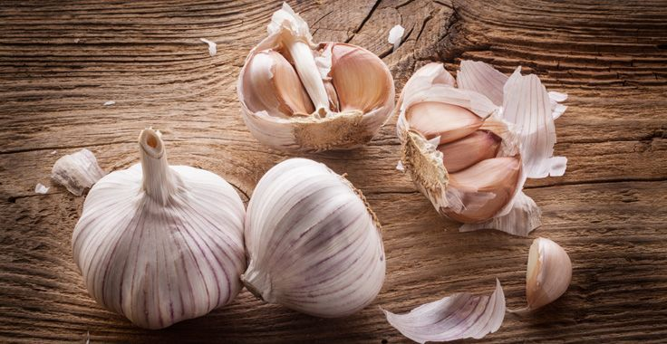 HH_SF_Garlic_Fotolia_72147438_Subscription_Monthly_XXL_736x380